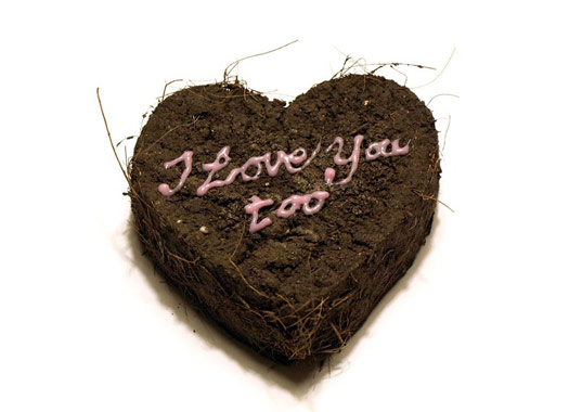 luvmud, heart shaped seed bomb, seed bomb, valentine's day, eco friendly valentine's day,