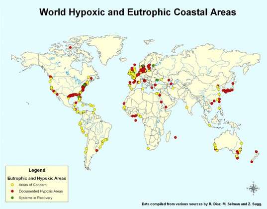 water pollution, dead zone, aquatic dead one, aquatic, hypoxic, oxygen depleted, nitrous oxide, oxygen, global warming, climate change, ocean life, aquatic life, low oxygen levels