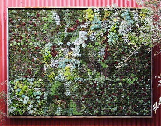 Flora Grubb Panels Let You Design Your Own Vertical Garden ...