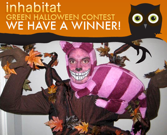 TATGHWinner, cheshire cat costume, green halloween, inhabitat green halloween contest, costume contest, green costumes, eco costumes, earth friendly costumes, costume ideas