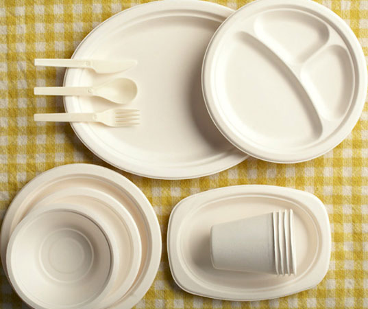 biodegradable party kit, biodegradable plates, biodegradable cups, biodegradable utensils, recycled napkins, eco-friendly party, green party, 4th of july, independence day, bagasse, potato starch utensils