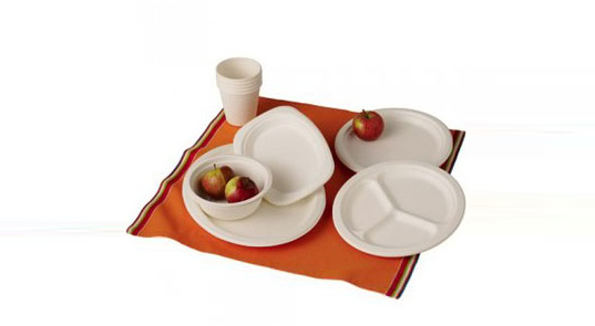 biodegradable party kit, picnic set, branch, compostable tableware