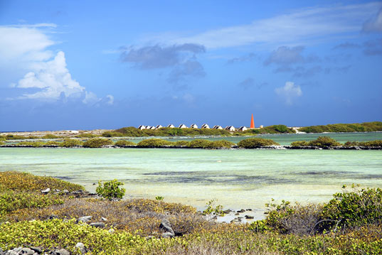 Bonaire Beach, eco resort, 100% sustainable island, eco tourism, renewable energy, bonaire eco island, evelop, enercon