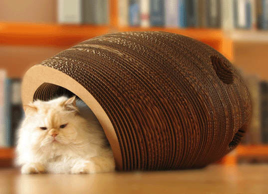 cat cocoon, cardboard, water glue, cat, cat furniture