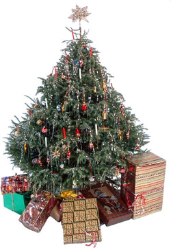 A GREENER CHRISTMAS TREE | Inhabitat - Green Design Will Save the ...