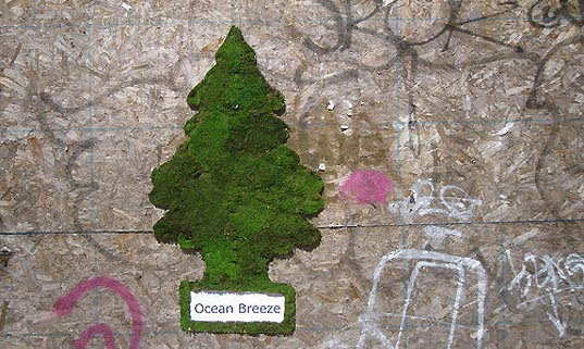 eco art, environmental art, living art, living street art, street art, grass art, moss art, street environmental, urban space art, mosstika, edina tokodi, public space, public art, new york city art, brooklyn art