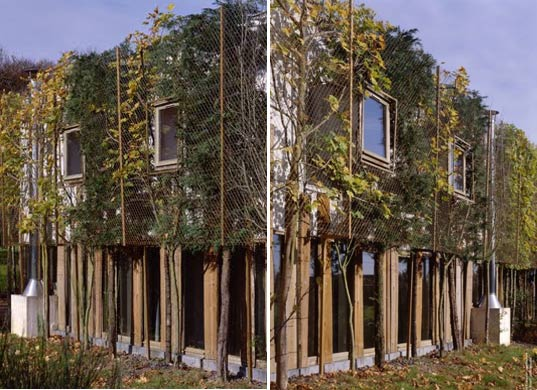 sustainable design, green architecture, green building, living walls, green facade, botany, holiday houses, jupilles