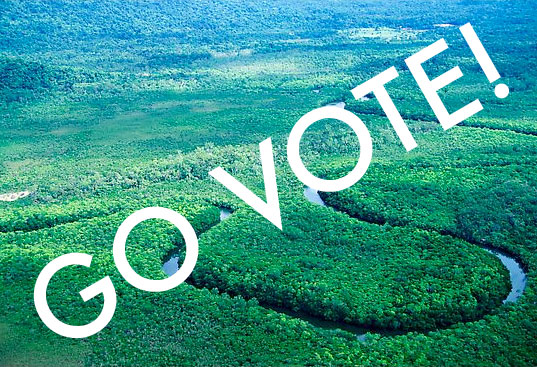 Go Vote for the environment, vote the environment, vote environment