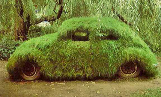 grass, vw, eco ride, car, retrofit, transportation, biodiesel