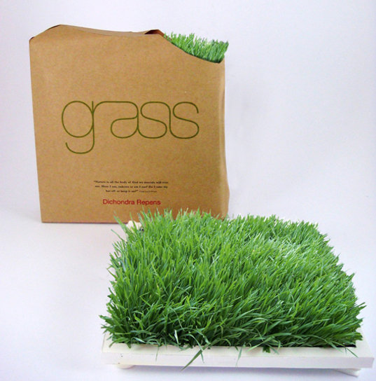 Living grass, grass for home or office, grass mat, living grass mat, indoor grass planter, eco grass, green grass, grass design