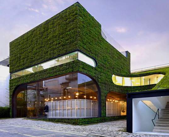 Mass Studies, green retail design, green roof, green walls, living building, green building, building that is literally green, growing building, botanical building, foliage architecture, green walls, ann demeulemeester, seoul architecture,  Minsuk Cho, Kisu Park, biomimicry