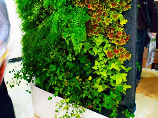 sustainable design, green design, gardening, interior, greenworks, living wall, plant wall, icff