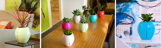 Grobal, self watering pot, hydroponics, Karim Rashid, green design home accessory, interiors gardening, DIY horticulture, self-watering plant, home ecology, house plants, green your home
