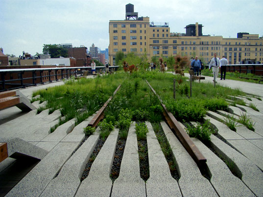 High Line, Fingers of Foliage
