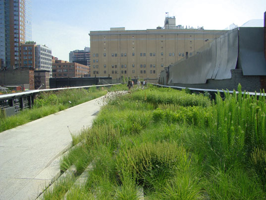 High Line - looking exactly like we had hoped and imagined!