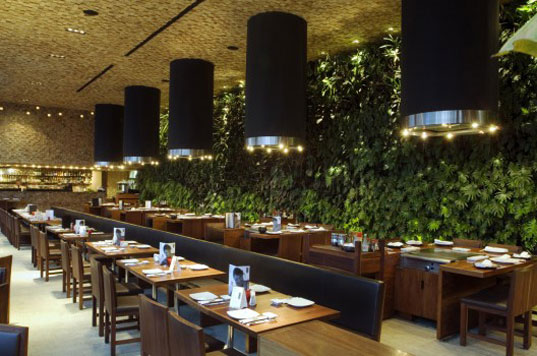 Serrano Cherrem Architects, Restaurant Japonez, Living Wall, Organic Architecture, sustainable design, green building, vertical green wall, sustainable architecture