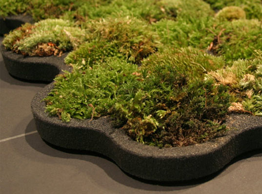 Sustainable Decorations, Moss Carpet, Nguyen La Chanh, Sustainable Interiors, green design, living design, moss bathroom mat, water recycling, sustainable design