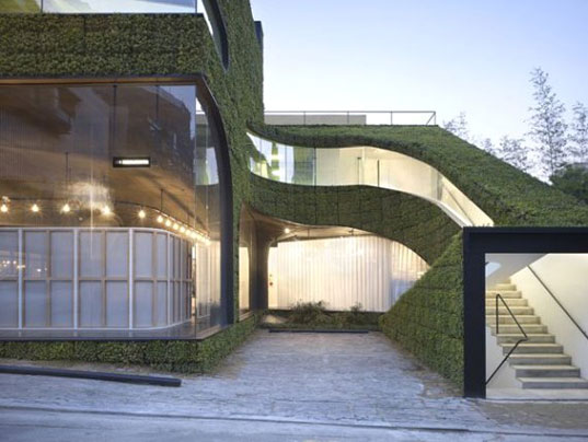 Massive Studies, green retail design, green roof, foliage architecture, green walls, ann demeulemeester, seoul architecture,  Minsuk Cho, Kisu Park, biomimicry