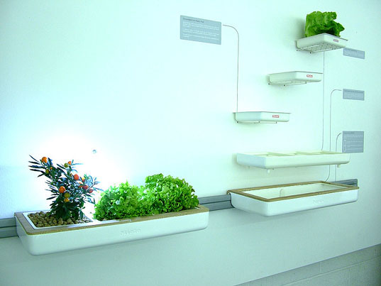 Miele Cultivate kitchens of the future, organic agriculture, greywater, module pod