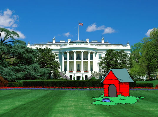 obama sustainable dog house, summa canum, green roof, dog house, low voc paints, obama puppy, green building, sustainable architecture