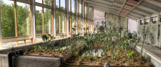 The Greenhouse At Rhinebeck. The 6200-square-foot facility