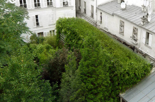 lost in paris house, r&sie architects, sustainable architecture, vertical garden, green roof, green building, rainwater recycling