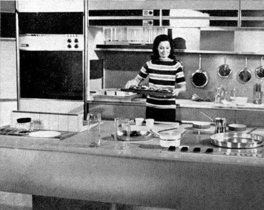 sustainable design, green design, kitchen of the future, interior design, green building, products, philco ford kitchen