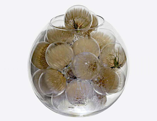 Seed Orb, Richard Solomon, environmental art, eco art, plant art, plant seeds, blooming buds