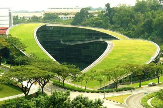sustainable design, green design, green roof, green building, sustainable architecture, urban heat island effect, kenzo tange, singapore