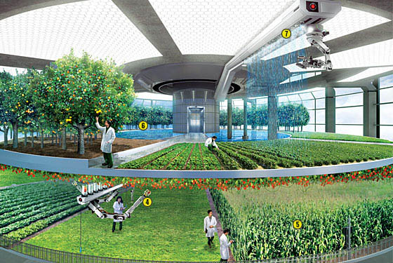 Skyfarm farming agriculture concepts sustainability skyscrapers sky farm interior