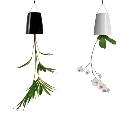 boskke s upside down sky planters save water and space inhabitat sustainable design. Black Bedroom Furniture Sets. Home Design Ideas