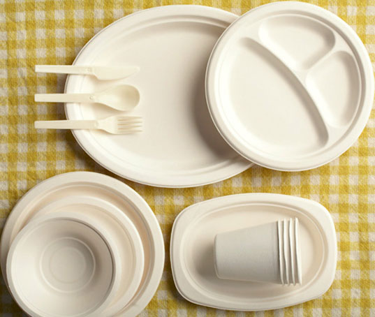 Branch Home, compostable plates, biodegradable plates, green tableware, eco-friendly tableware