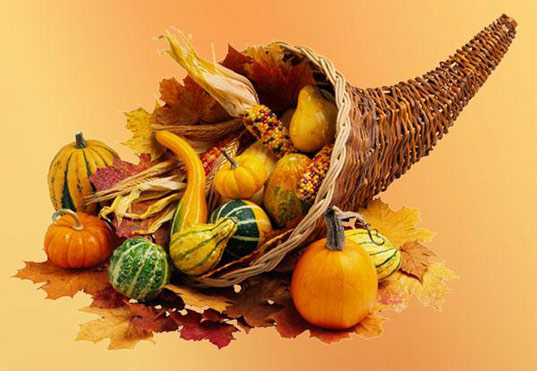 sustainable design, green design, inhabitat thanksgiving, top ten list of things to be thankful for, holiday