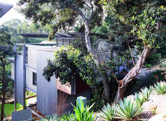 Steven Isaacs, Lisa Saville, Australia, Sydney, house among the trees, council protected trees, treehouse1.jpg