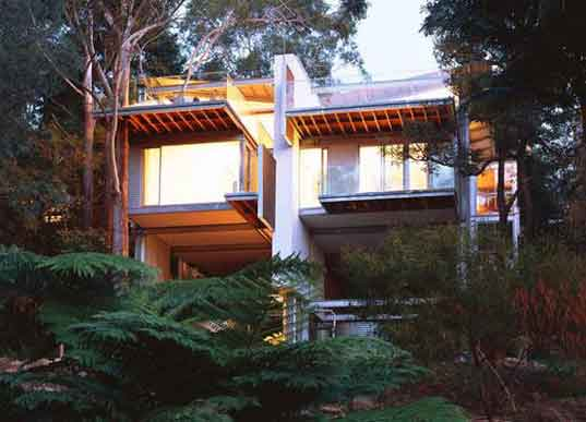 Steven Isaacs, Lisa Saville, Australia, Sydney, house among the trees, council protected trees, treehouse3.jpg