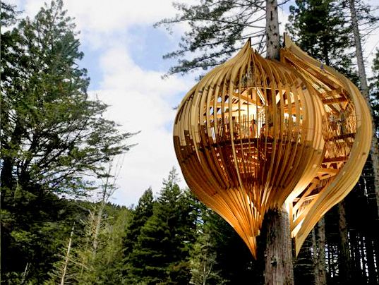 yellow tree house, yellow pages treehouse, pacific environments architects ltd., tree house restaurant, natural lighting, locally sourced materials, green building
