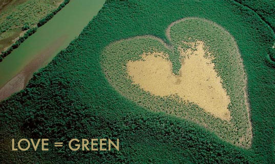 green valentine, green valentines day, green valentine's day, eco valentines, sustainable valentine