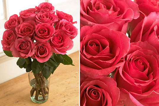 valentine day roses, pink roses, pink rose bouquet